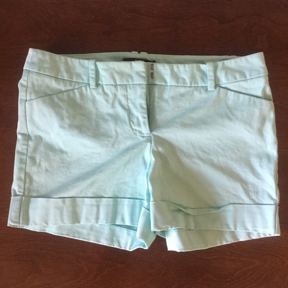 Mossimo Supply Co. Pants - Mossimo | Mint Green Stretch Extensible Shorts 6